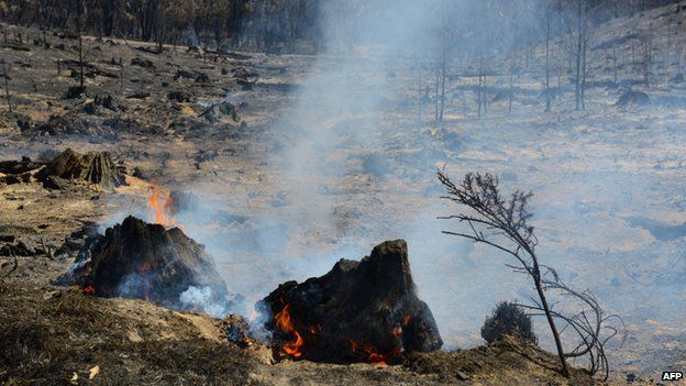 A small fire burns after a bushfire moved through the area near One Tree Hill in the Adelaide Hills on January 5, 2015