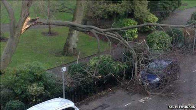 Storm damage in central Edinburgh