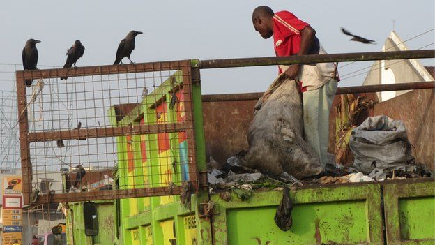 Crows in Mombasa