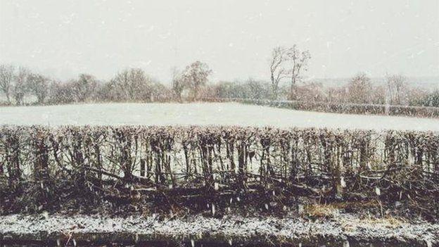 Snow at Cors Caron Nature Reserve, Ceredigion