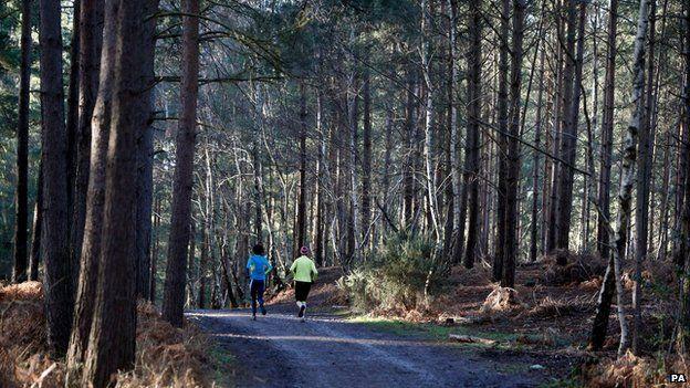 Runners in Bracknell Forest, Berkshire