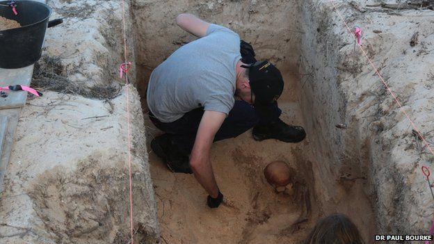 The excavated skeleton