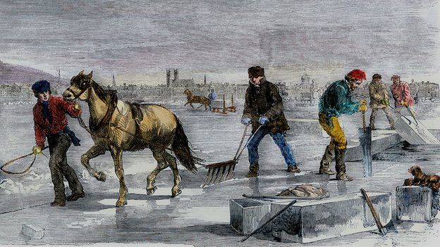 Harvesting ice, North America 1850s