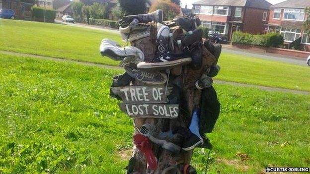 Tree of Lost Soles
