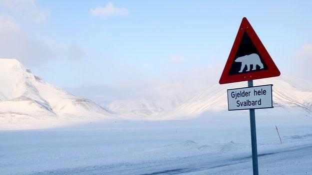 Spitsbergen, polar bear warning sign