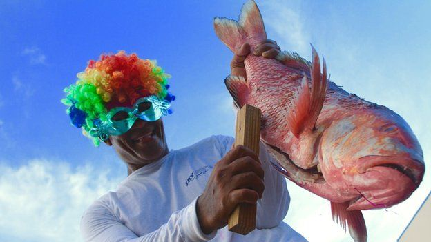 A performer from Seychelles scaling a red snapper, a popular dish on the islands.