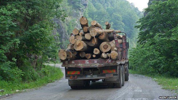 Logging truck (pic: Agent Green)