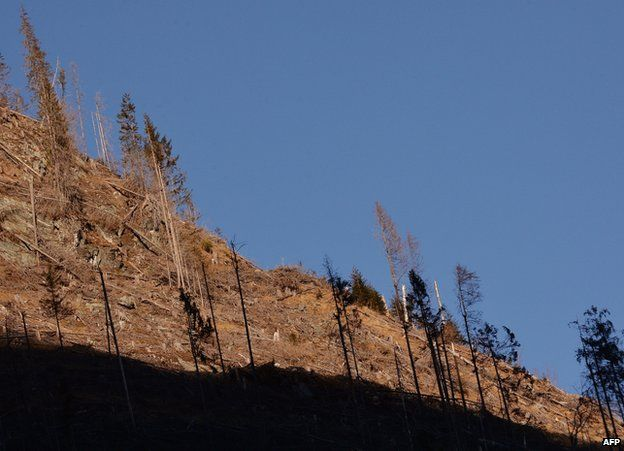 Bare slope in Pojarna Valley