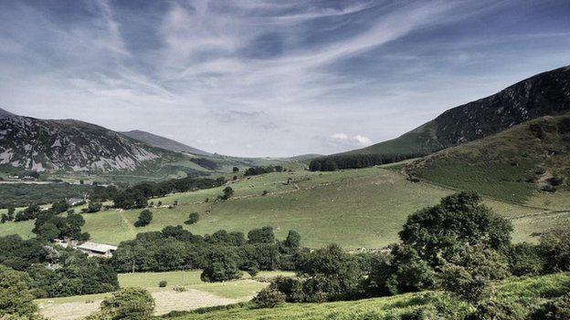 Yr Eifl - Dafydd Elfryn