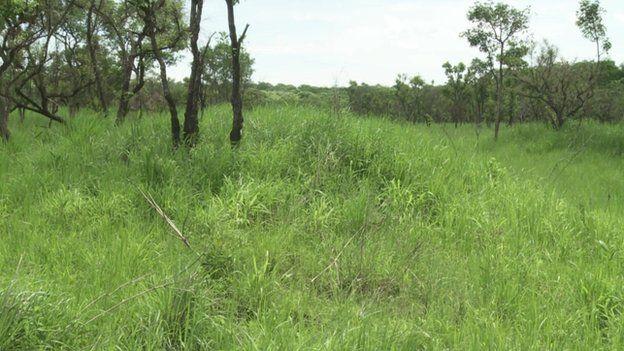 Land in Apaa northern Uganda