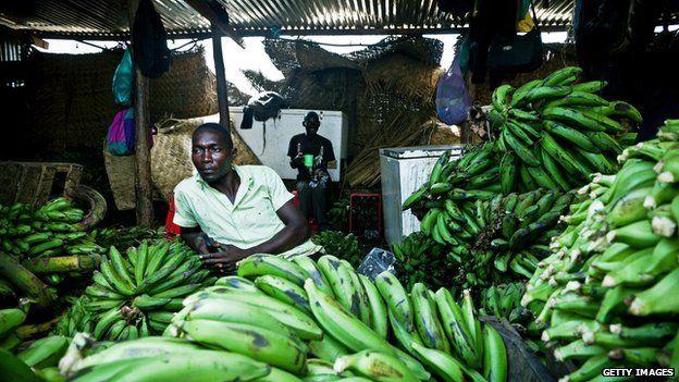 Ugandan bananas for sale in a South Sudan market