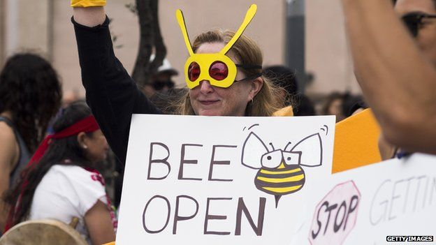 Activists take part in a march against GM food products on May 23, 2015, in Los Angeles, California