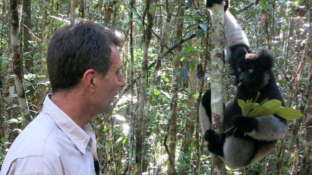 David Shukman and lemur