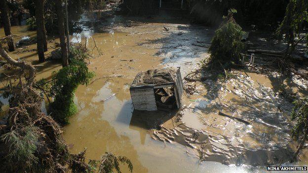Flood damage at Tbilisi zoo