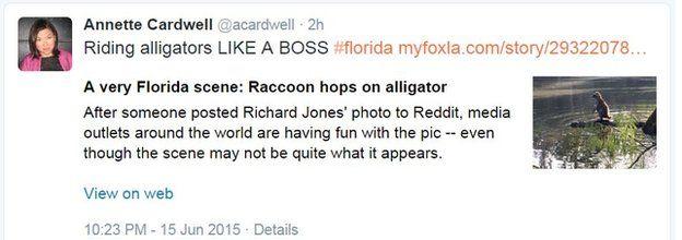 Annette Cardwell tweet