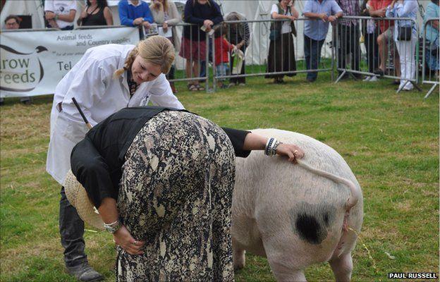 The Dorset County Show, 2011