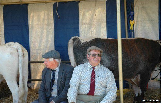 The Dorset County Show, 2006