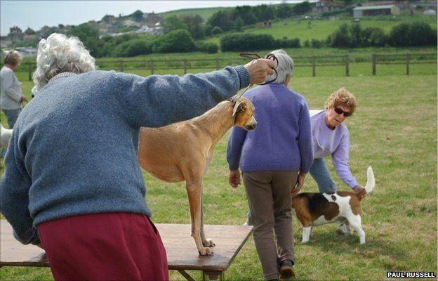 Brit Valley Dog Show, 2008