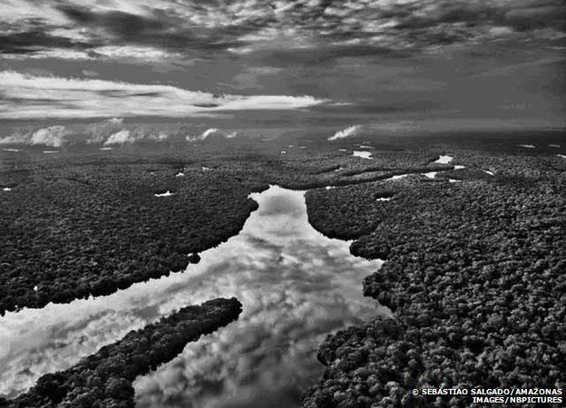 The State of Amazonas, Brazil, 2009