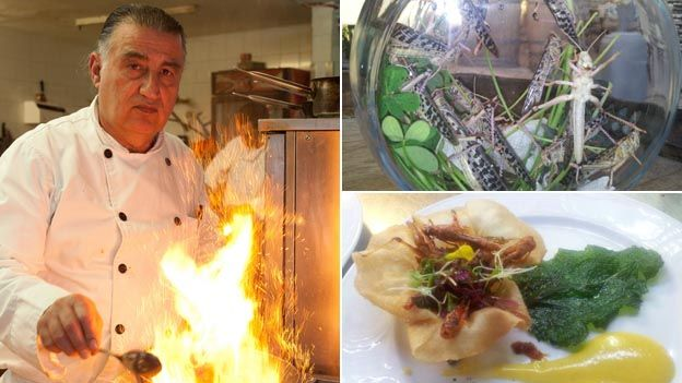 Chef Moshe Basson (l), a bowl of live locusts (top right) and a dish made of locusts (bottom right)