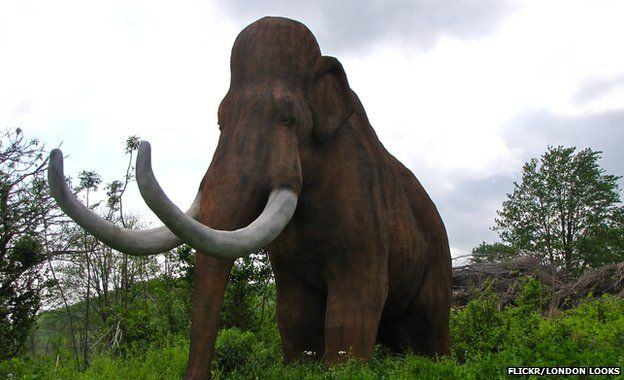 f1dca0a6875 Mammoth genome sequence completed - BBC News