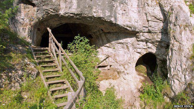 Denisova Cave Bence Viola