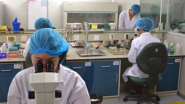 Chinese scientists at cloning centre