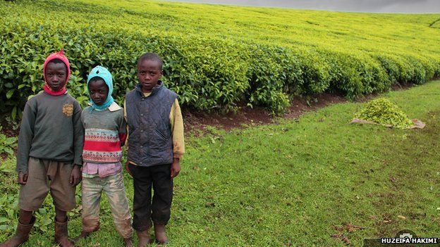 Children standing at the edge of crops, copyright Huzeifa Hakimi