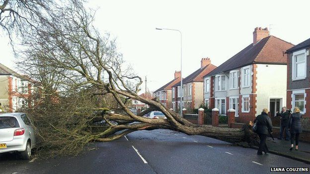 Rhydhelig Avenue in Cardiff