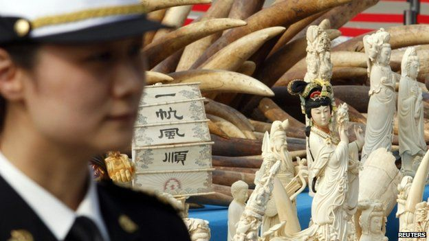 A police officer stands guard next to ivory and ivory sculptures before they are destroyed in Dongguan, Guangdong province 6 January 2014