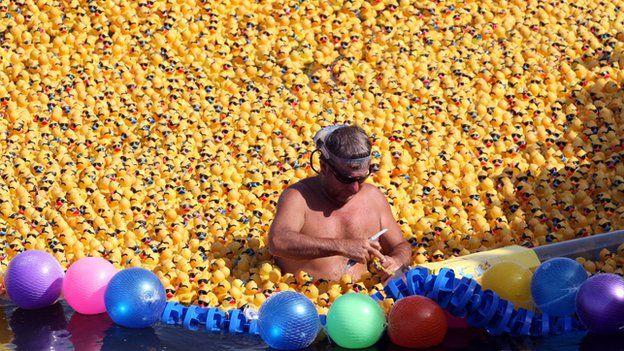 Rubber ducks racing in Cancun