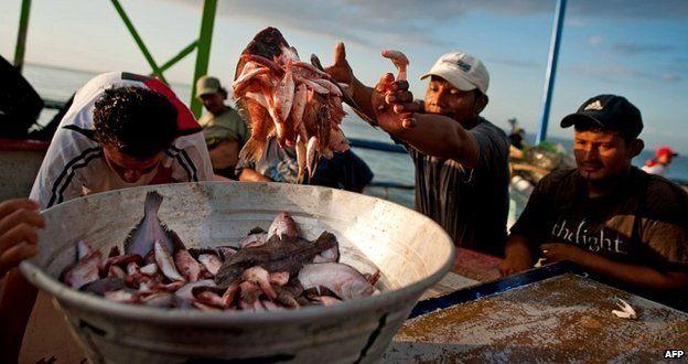 Fishermen in El Salvador