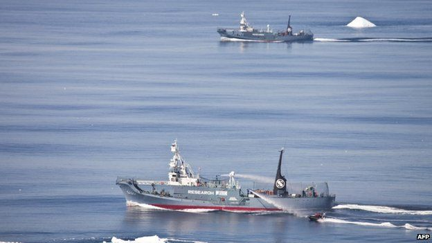 File photo: Japanese whaling vessels Yushin Maru #2 and Yushin Maru #3, with activist group Sea Shepherd's Zodiac boat (bottom right) during clashes in the Southern Ocean, 1 January 2011