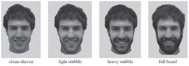 Four levels of beardedness