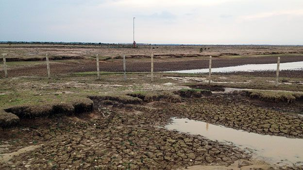 Dry plains in Casanare