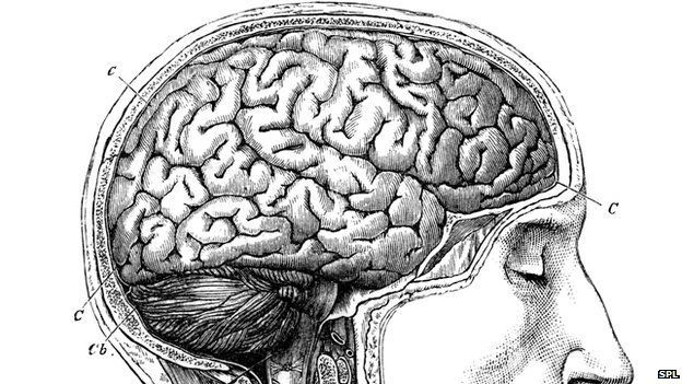 the difficult task of reading the brain bbc news