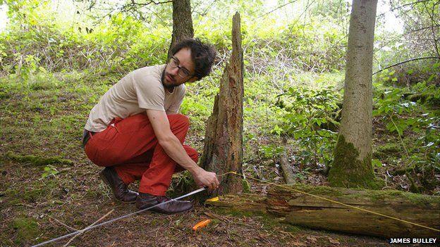 Daniel Jones surveying Thetford Forest