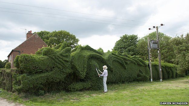 John Brooker clipping the dragon-style topiary