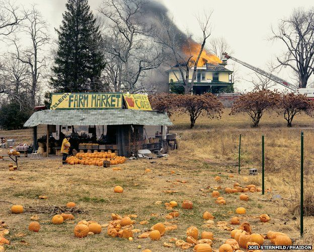McLean, Virginia, December 1978 by Joel Sternfeld