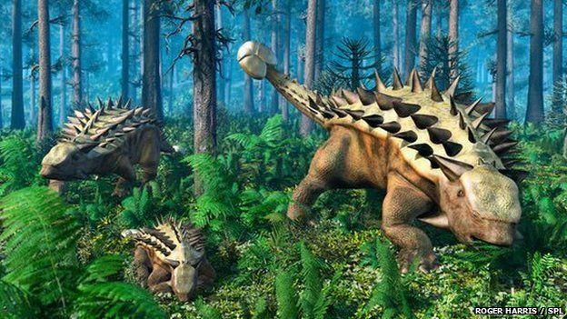 arkylosaurus family