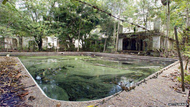 Pablo Escobar's hippos: A growing problem - BBC News