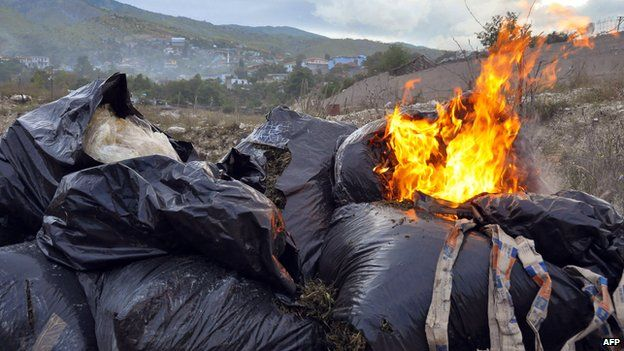 Bags filled with seized cannabis are burned by Albania's police in Lazarat village on 19 June 2014