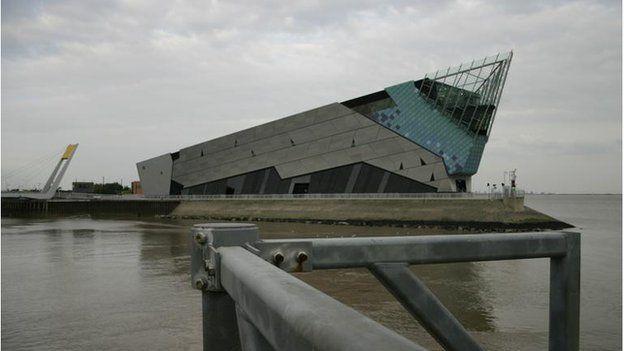 Hull's Deep Aquarium