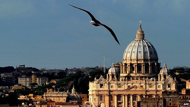 A gull flying across the Vatican skyline