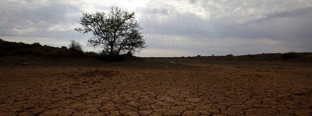 Parched farmland (Image: Reuters)