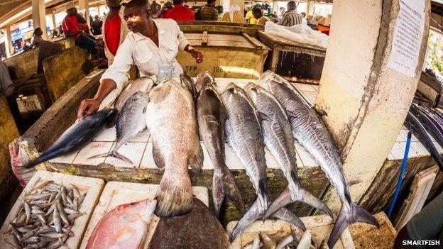 A trader at Dar es Salaam fish market, Tanzania