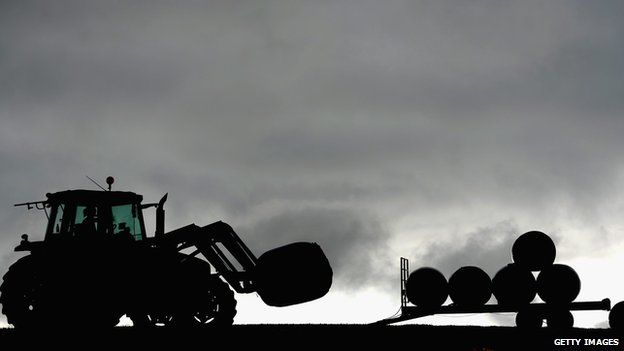 Tractor and silage bales