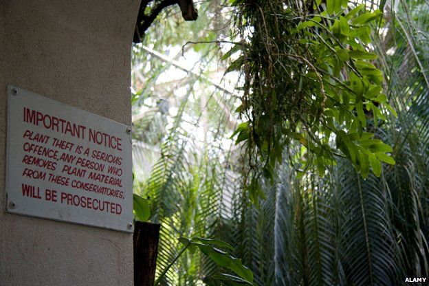 Sign warning plant theft