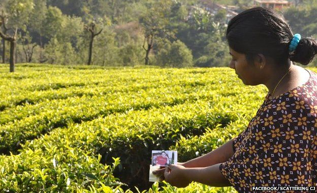 Scattering CJ's ashes at a tea plantation in Tamil Nadu, India