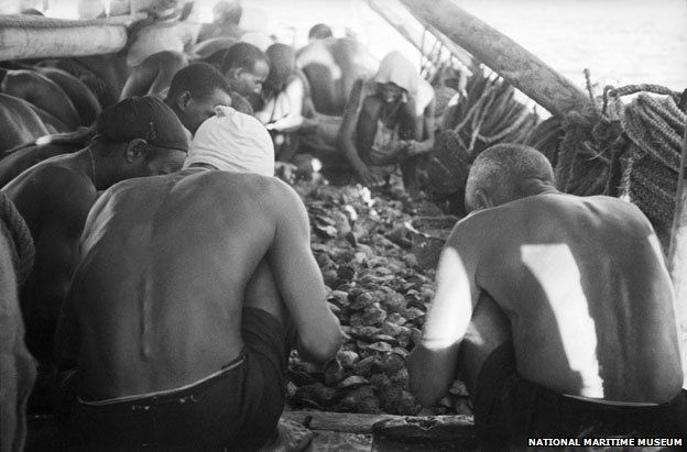 Divers looking through the oyster catch